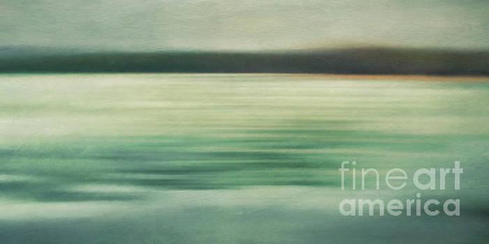 Gray days at the lake by Priska Wettstein