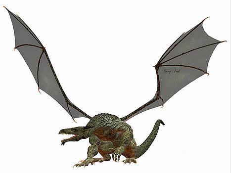 Corey Ford - Gray Dragon
