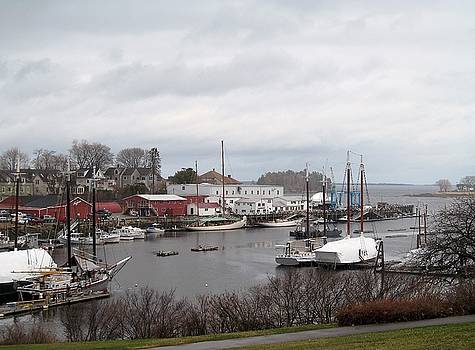 Gray Harbor in Spring by Loretta Pokorny