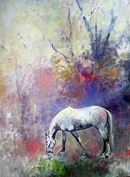 Gray Morning by Anne Lattimore