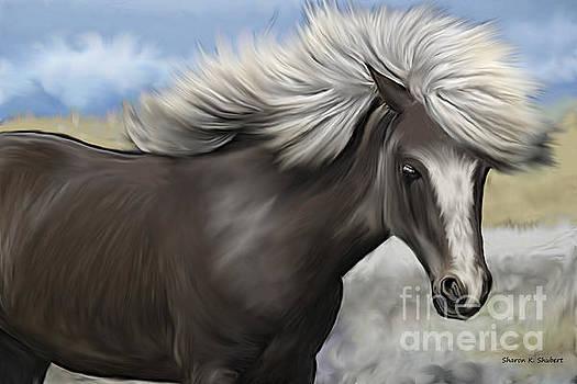 Gray Painted Pony by Sharon K Shubert