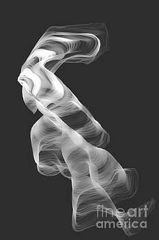 Gray Swirl by Barbara Milton