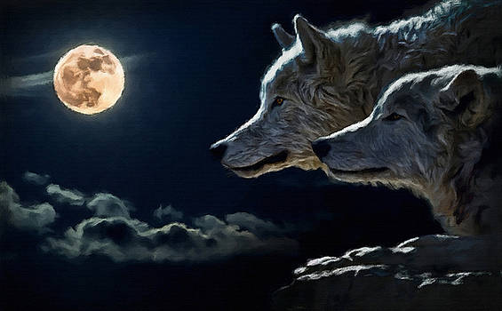 Gray Wolves by William Wooding
