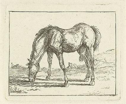 Grazend paard naar links by Jan Dasveldt