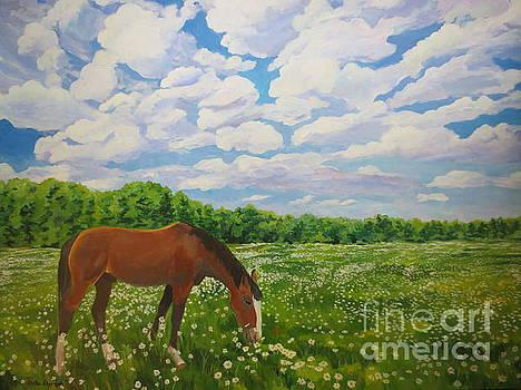 Grazing Among the Daisies by Stella Sherman