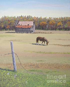 Grazing at Peace by Norm Starks