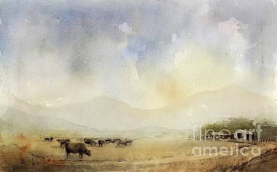 Grazing Herd by Tim Oliver