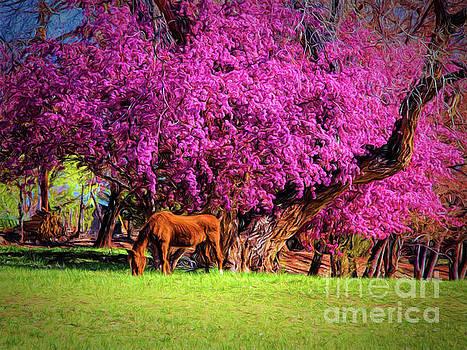 Grazing Horse  ... by Chuck Caramella