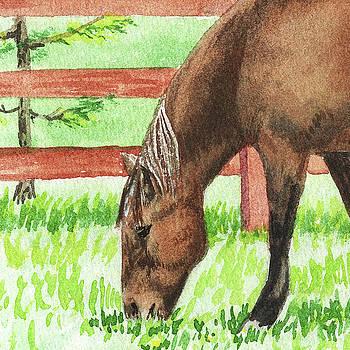 Grazing Horse Watercolor Pet Portrait by Irina Sztukowski