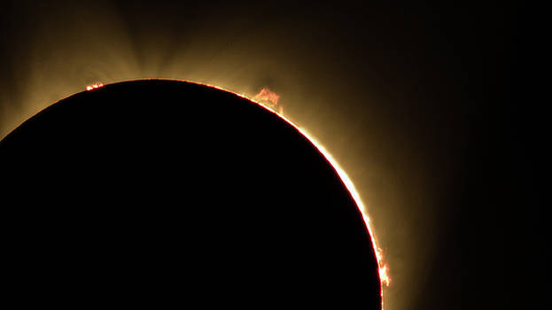 John King - Great American Eclipse 16x9 Prominence as seen in Albany, Oregon.