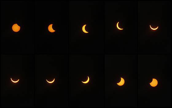 Great American Eclipse 2017 by Mandy Shupp