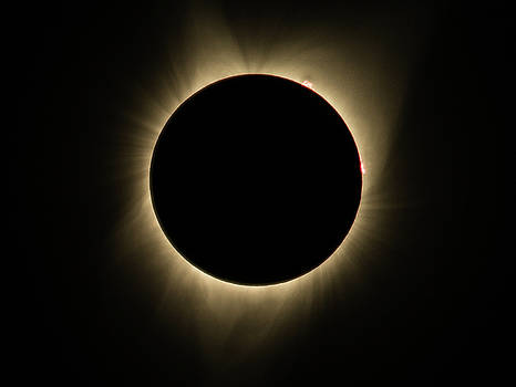 John King - Great American Eclipse Totality Square as seen in Albany, Oregon.