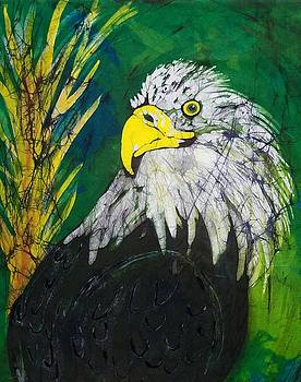 Great Bald Eagle by Kay Shaffer