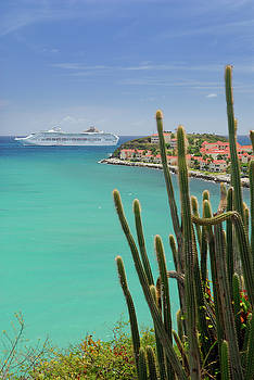 Reimar Gaertner - Great Bay St Maarten with cruise ship and cactus