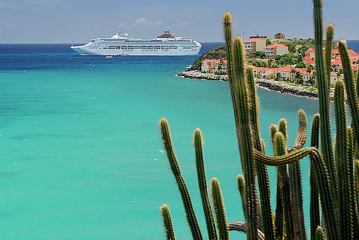 Reimar Gaertner - Great Bay St Maarten with cruise ship and tall cactus