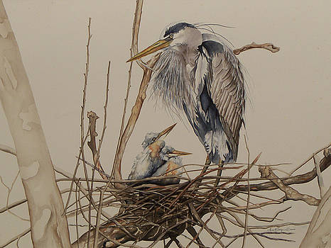 Great Blue Heron and Chicks by Laurie Tietjen