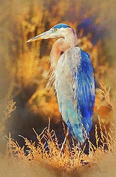 Great Blue Heron by Bellesouth Studio