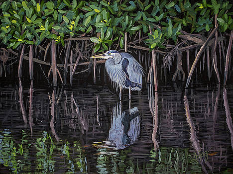 Great Blue Heron  by Manuel Lopez