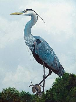 Great Blue Heron by Marsha Friedman