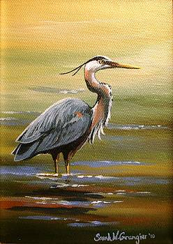 Great Blue Heron by Sarah Grangier