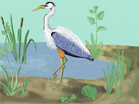 Great Blue Heron by Shae Leighland-Pence