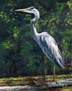 Great Blue Heron Study by Jymme Golden