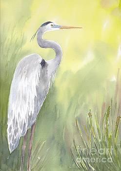 Great Blue Heron by Yohana Knobloch