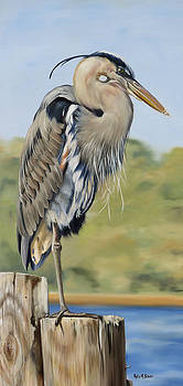 Great Blue Heron Standing by Phyllis Beiser