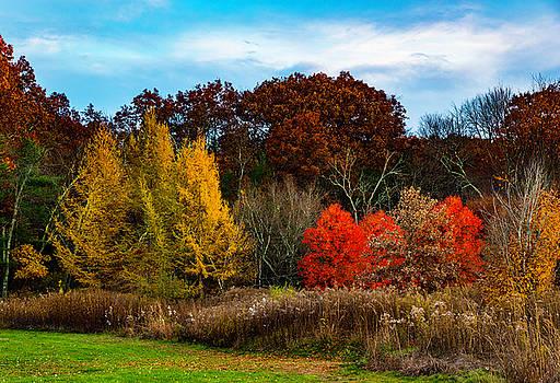 Great Brook Farm Autumn by John Forde