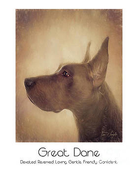 Great Dane Poster by Tim Wemple