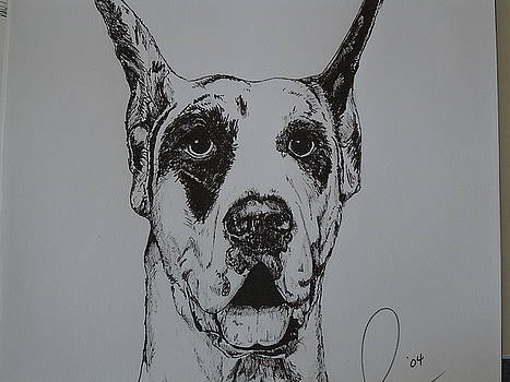 Great Dane  by Raymond Nash