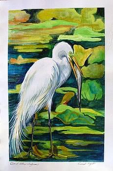Great Egret by Carol Allen Anfinsen