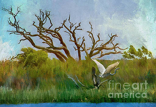 Great Egret in the Marsh by Kelley Freel-Ebner