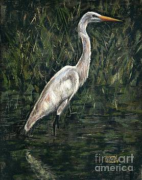 Great Egret Study by Jymme Golden