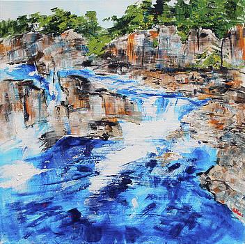 Great Falls Waterfall 201826 by Alyse Radenovic