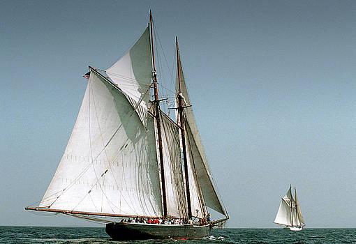 Great Gloucester Schooner Race by Fred LeBlanc