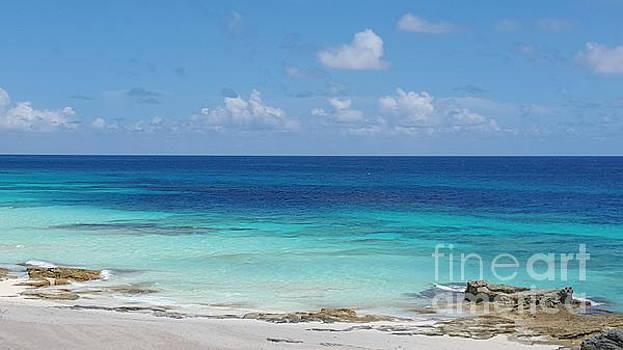 Great Guana Cay Ocean by Jennifer Capo