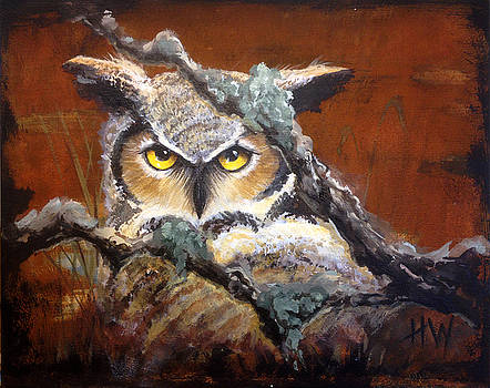 Great Horned Owl by Holly Whiting