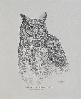 Great Horned Owl by Jim Young