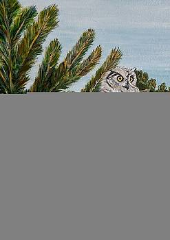 Great Horned Owl - Owl on the rocks by Marilyn  McNish