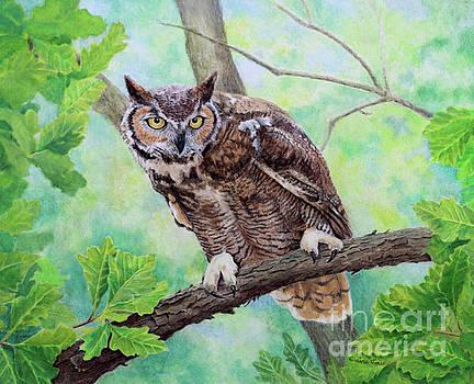 Great Horned Owl Portrait by Elaine Jones