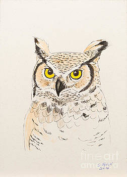 Great horned owl by Stefanie Forck