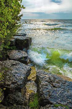 Great Lakes by Lynn Hansen