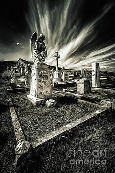 Adrian Evans - Great Orme Graveyard