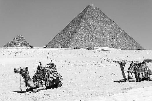 great pyramids of Giza by Silvia Bruno