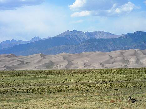 Great Sand Dunes National Park by Peter  McIntosh