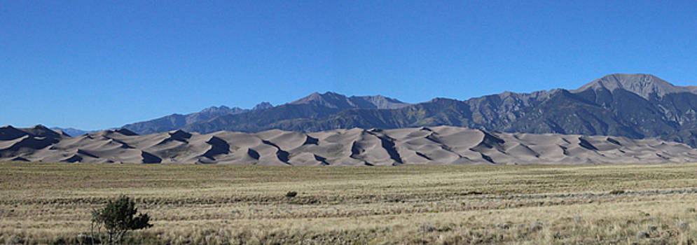 Great Sand Dunes Park by Craig Butler