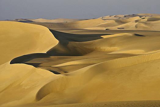 Michele Burgess - Great Sand Sea