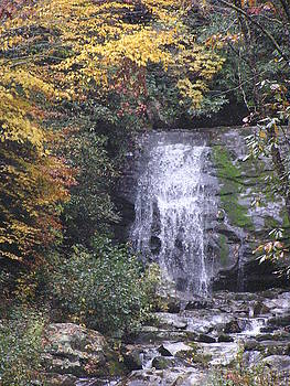 Great Smokey Mountains Waterfall by Diane Frick