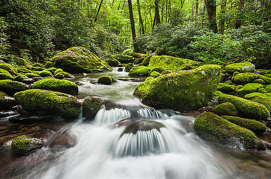 Great Smoky Mountain National Park Roaring Fork Mountain Stream by Mark VanDyke